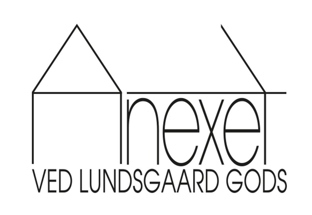 WEB-Anexet_Logo-21X21-HVID_